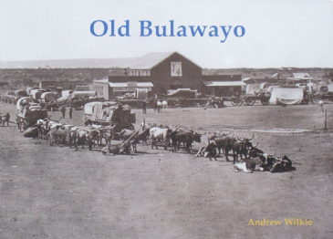 Old Bulawayo, by Andrew Wilkie